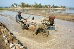 亚裔农夫,越南米领域,拖拉机耕犁 库存图片