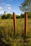 两木柱子在草甸 免版税库存照片