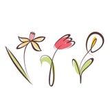 被概述的手拉的花收藏 免版税库存图片