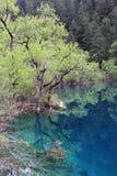 湖沉寂 图库摄影