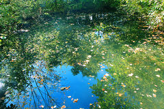在池塘的天空反射 库存照片