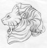 咆哮狮子铅笔剪影 免版税图库摄影