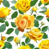 与黄色玫瑰的无缝的花卉背景 图库摄影