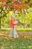 夫妇年长愉快 图库摄影