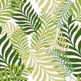 绿色留下棕榈树 模式无缝的向量 有机的自然 免版税库存照片