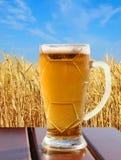 在木桌上的啤酒杯反对麦子和天空 库存图片