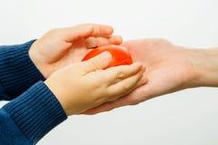 拿着红色复活节彩蛋的孩子手 免版税图库摄影