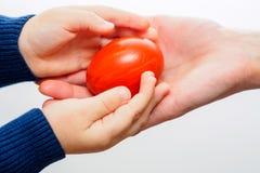 拿着红色复活节彩蛋的孩子手 免版税库存照片