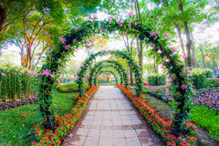 美丽的花成拱形与走道在园林植物庭院里 免版税库存照片