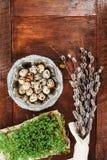 复活节结构的水芹、柔荑花和鸡蛋在木桌上 免版税库存图片
