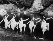 水上芭蕾(所有人被描述不更长生存,并且庄园不存在 供应商保单将没有模型关于 免版税库存图片