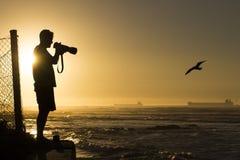 野生生物摄影师 免版税库存照片