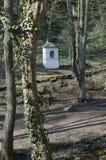 教堂在山坡的森林 免版税库存照片