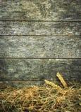 秸杆和麦子在土气木背景 图库摄影