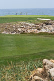прибрежные игроки в гольф Стоковые Изображения