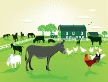 在农场的动物 免版税图库摄影