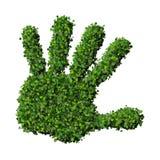 Χέρι - που γίνεται από τα πράσινα φύλλα Στοκ Εικόνες
