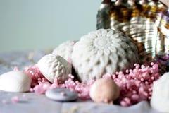 圆的手工制造肥皂和贝壳 免版税库存图片