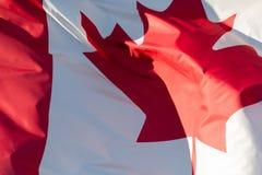 可用的加拿大标志玻璃样式向量 免版税图库摄影