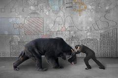 Бизнесмен воюя против черного медведя с концепцией дела делает Стоковое Фото