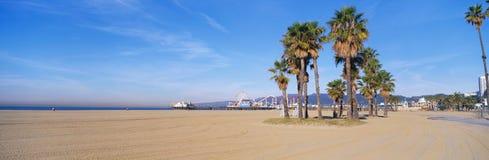 这是与其游乐园的圣莫尼卡海滩和码头 有在前景的棕榈树 免版税图库摄影