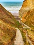 下来海滩的道路 库存图片