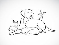 Διανυσματική ομάδα κατοικίδιων ζώων - σκυλί, γάτα, πουλί, κουνέλι, Στοκ Εικόνες