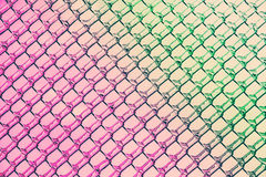 对绿色的桃红色在冰金刚石样式 免版税库存照片