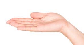 Κενό θηλυκό ανοικτό χέρι Στοκ εικόνα με δικαίωμα ελεύθερης χρήσης