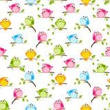 Άνευ ραφής σχέδιο με τα πουλιά χρώματος Στοκ Εικόνα