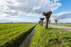 沿草原的平直的垄沟在一个晴天 免版税库存照片