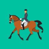 Άλογο εκπαίδευσης αλόγου σε περιστροφές και αναβάτης, ιππικός αθλητισμός Στοκ Φωτογραφίες