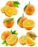 Комплект апельсинов изолированных на белой предпосылке Стоковая Фотография