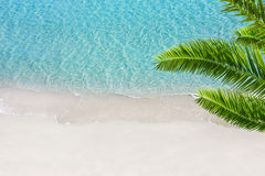 白色沙子海滩和热带海有棕榈树的 库存照片