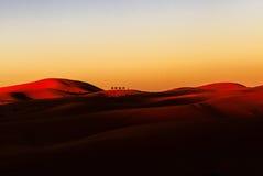 骆驼有蓬卡车沙漠撒哈拉大沙漠 免版税库存照片