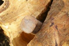 分裂的木头 免版税库存照片