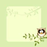 传染媒介与逗人喜爱的猫头鹰的框架设计 免版税库存图片