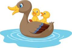 在池塘的动画片鸭子 库存照片