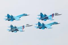 俄罗斯的猎鹰 库存照片