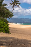 海滩夏威夷北部奥阿胡岛岸 图库摄影