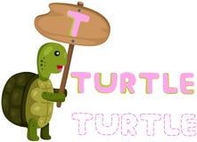 Ζωικό αλφάβητο τ με τη χελώνα Στοκ εικόνα με δικαίωμα ελεύθερης χρήσης