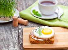 健康蛋三明治用蒜细香葱 库存图片