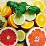 померанцы известок лимонов цитрусовых фруктов Стоковые Изображения