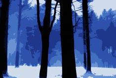 冰冷的森林场面蓝色和白色 库存图片