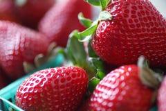 在塑料篮子的草莓 库存图片