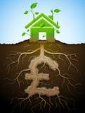 作为植物的生长房子作为根的标志有叶子的和磅 图库摄影