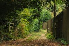 自然夏天风景 乡下视图和土气门 免版税库存照片