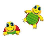 快乐的草龟 库存图片
