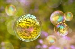 肥皂泡,绿色植物背景 库存照片