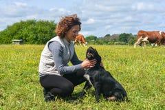 Собака получает приласканной его мастером Стоковая Фотография
